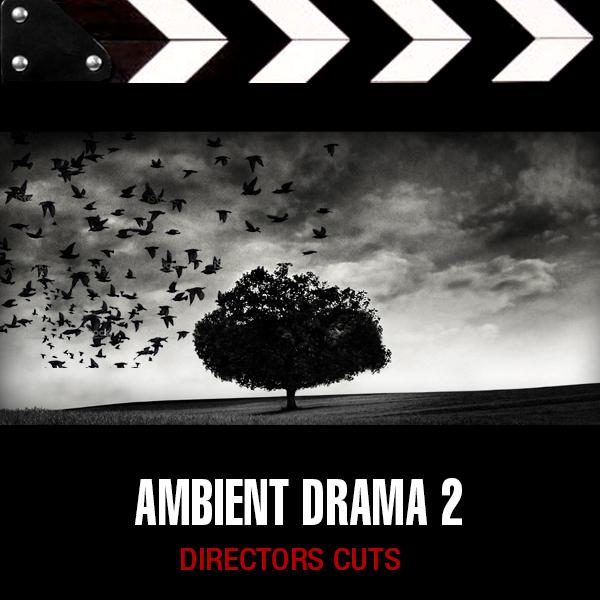Album art for the SCORE album AMBIENT DRAMA 2.