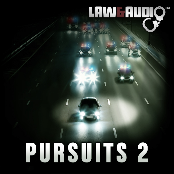 Album art for the SCORE album PURSUITS 2.