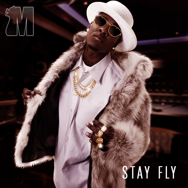Album art for the HIP HOP album STAY FLY.