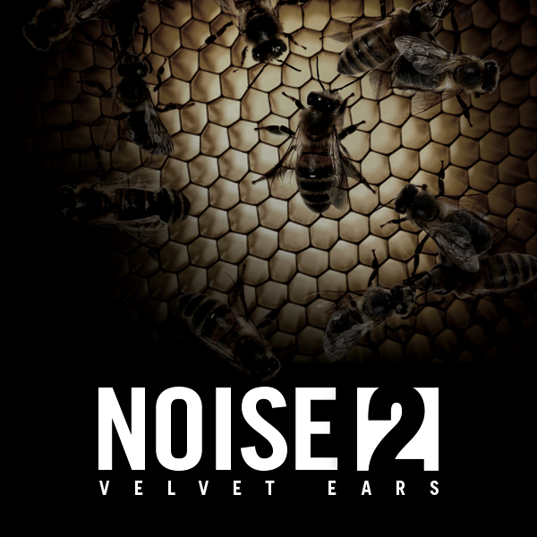 Album cover of NOISE 2