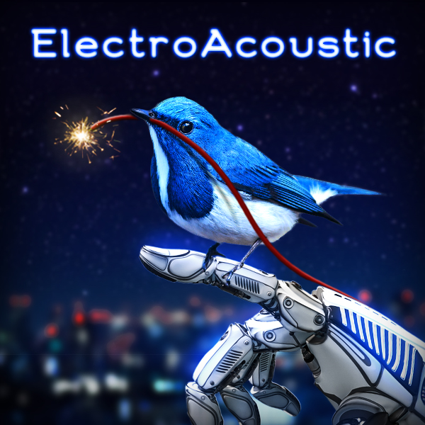 Album cover of ELECTROACOUSTIC