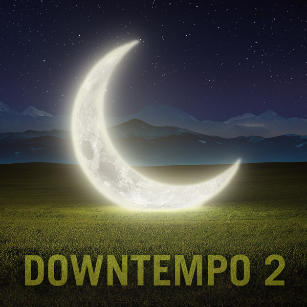 Album cover of DOWNTEMPO 2