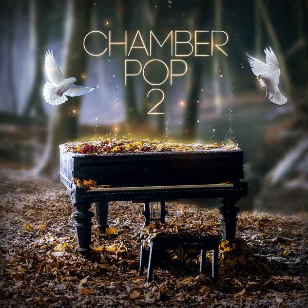 Album cover of CHAMBER POP 2