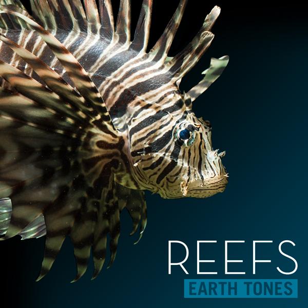 Album art for the SCORE album REEFS.