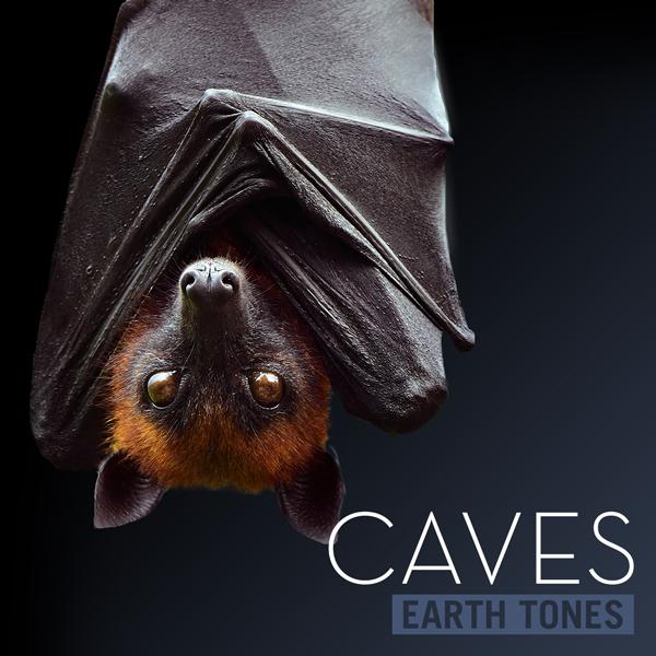 Album art for the SCORE album CAVES.