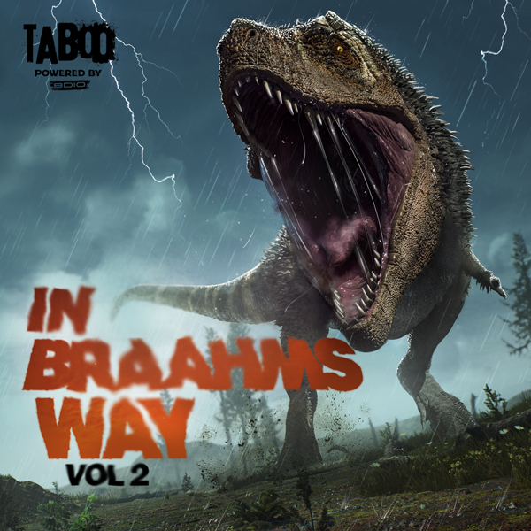 Album art for the SOUND DESIGN album IN BRAAHMS WAY VOL 2.