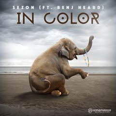 Album art for IN COLOR by SEZON (FT. BENJ HEARD).