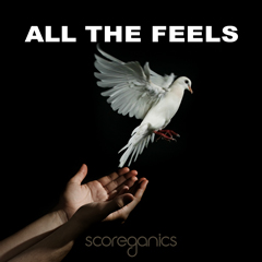Album cover of ALL THE FEELS
