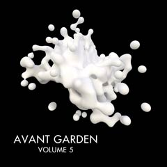 Album cover of Avant Garden Vol.5