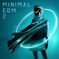 Album cover of MINIMAL EDM 2