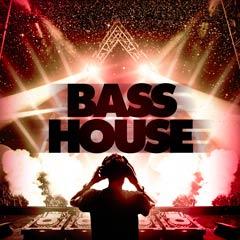 Album art for the EDM album BASS HOUSE.