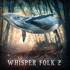 Album art for WHISPER FOLK 2.
