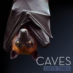 Album art for CAVES.