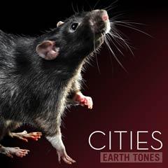 Album art for CITIES.