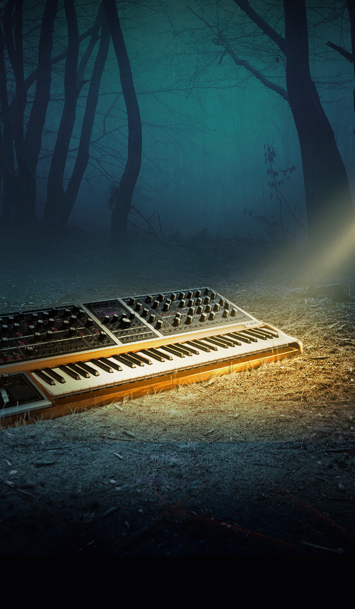 Image for IN THE MOOG