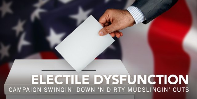 Art for ELECTILE DYSFUNCTION : CAMPAIGN SWINGIN' DOWN 'N' DIRTY MUDSLINGIN' CUTS.