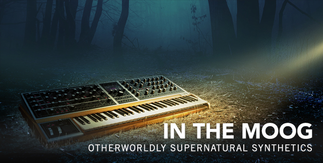 Art for IN THE MOOG : OTHERWORLDLY SUPERNATURAL SYNTHETICS.