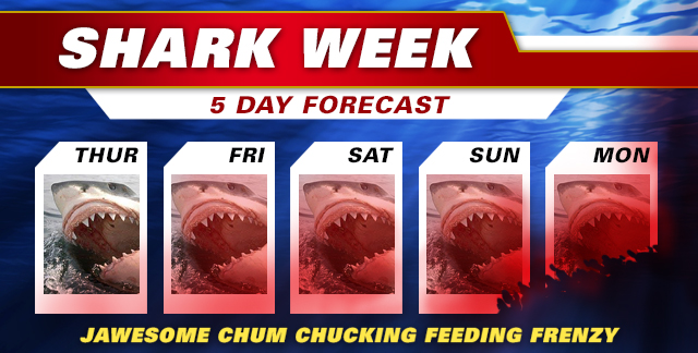 Art for SHARK WEEK : JAWESOME CHUM CHUCKING FEEDING FRENZY.