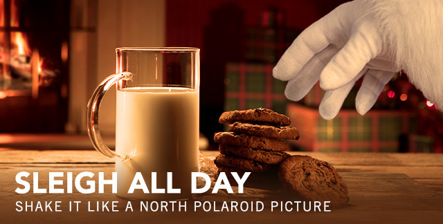 Art for SLEIGH ALL DAY : SHAKE IT LIKE A NORTH POLAROID PICTURE.