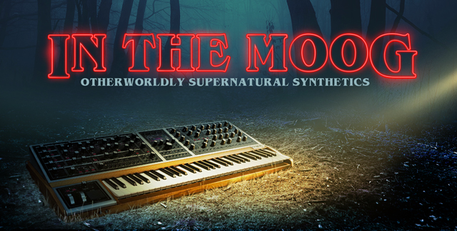 IN THE MOOG